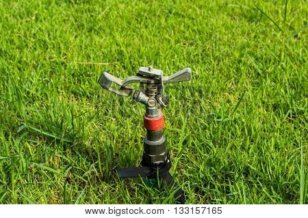 Garden sprinkler. Sprinkler on a green lawn.