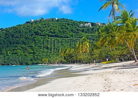Sandy beach on a tropical island in the morning. Magens Bay with gentle waves and magnificient palms on St Thomas US Virgin Islands.