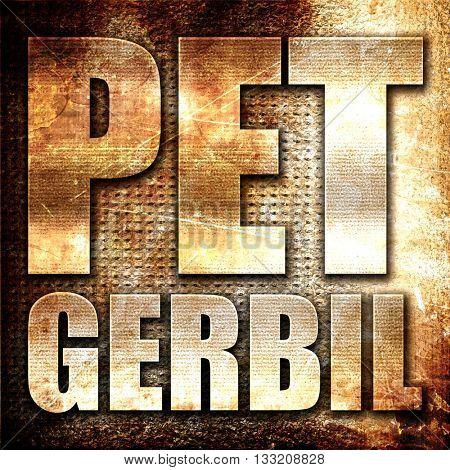 pet gerbil, 3D rendering, metal text on rust background