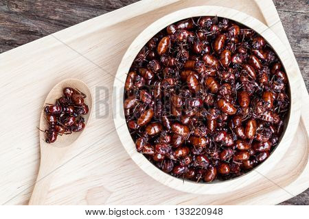 Subterranean Ants In Wood Bowl
