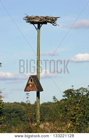 Telegraph pole with an owl nest box and osprey nesting platform in scrub with blue sky and white clouds as background.