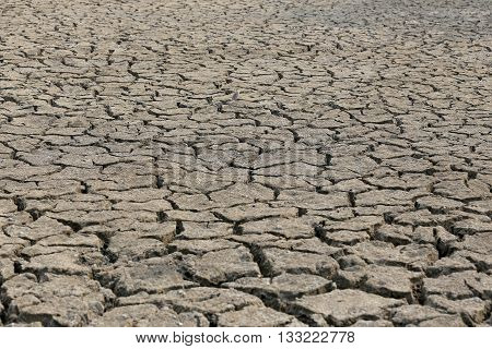 Cracked earth and dry soil texture for the design nature background.