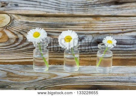 Flowers in a glass jar. Daisies in a glass jar. The background of the old pine planks with a pronounced texture of the wood