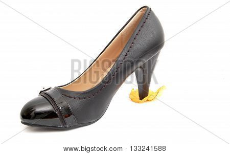 picture of a sexy black female shoes on a white background.