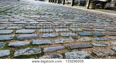 Old cobble stone road lined with moss and small stones in between various bricks and vanishing point