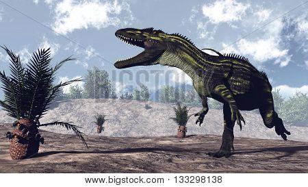 Torvosaurus dinosaur walking near cycaeodia plant by day - 3D render