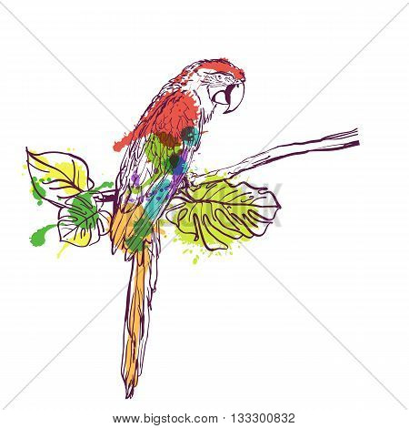 Vector Hand Drawn Watercolor Illustration Of Tropical Ara Parrot. Colorful Parrot Bird Sitting On Br