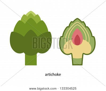 Nice Green artichoke and its transverse section