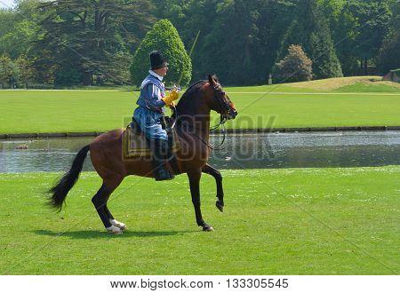 Saffron Walden, Essex, England - June 05, 2016: Brown horse being  ridden by man wearing Elizabethan costume with sword.