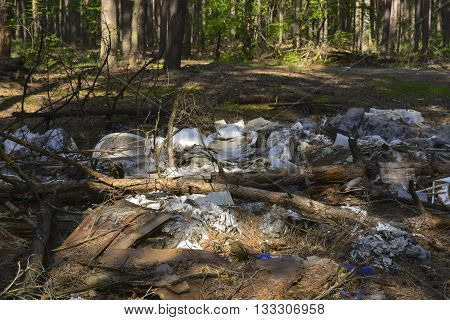 dump garbage in the forest, the destruction of human nature