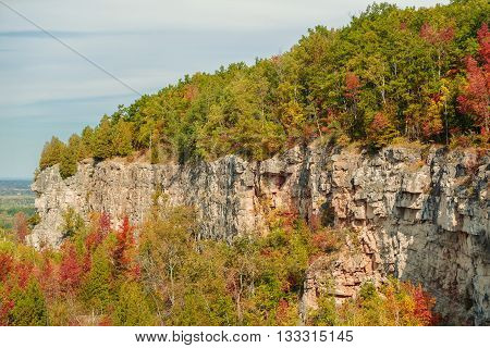 Fragment of beautiful gorgeous natural autumn background of Niagara escarpment green belt on sunny warm day poster