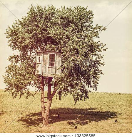 Tree house escape, Instagram toned image