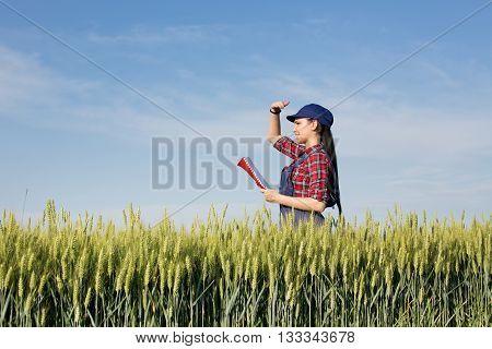 Farmer Girl In Wheat Field