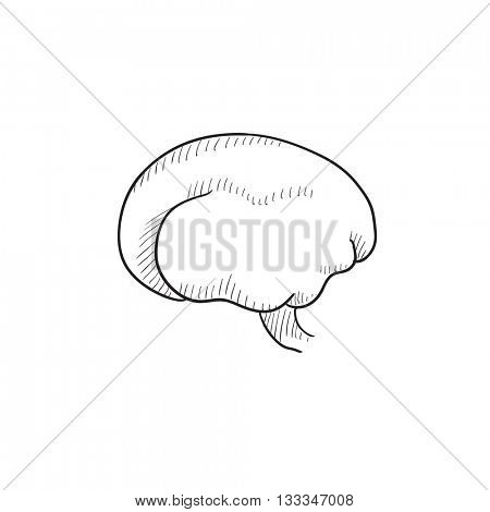 Brain vector sketch icon isolated on background. Hand drawn Brain icon. Brain sketch icon for infographic, website or app.
