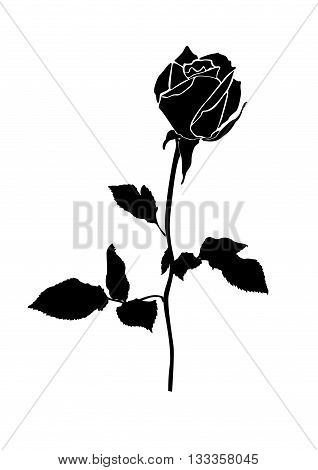 Stock Vector Illustration Rose Icon Isolated With White