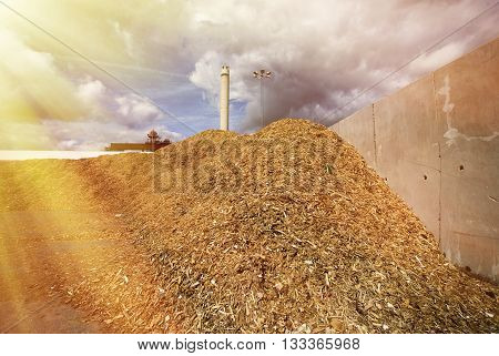 Storage Of Wooden Fuel (biomass) Against Blue Sky