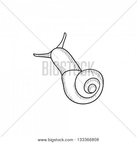 Snail vector sketch icon isolated on background. Hand drawn Snail icon. Snail sketch icon for infographic, website or app.