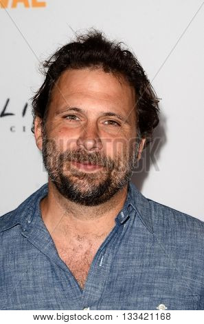 LOS ANGELES - JUN 6:  Jeremy Sisto at the Girl Flu Premiere at the Arclight Theater on June 6, 2016 in Culver City, CA