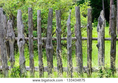 Old wooden fence enclosing bee apiary summer. russia