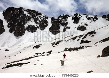 Hiker And Dog In Snowy Mountains At Spring