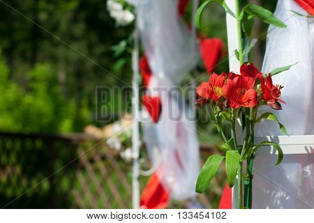 red lily on a background of a wedding arch with red hearts