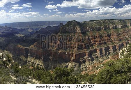 View of the North Rim of the Grand Canyon Arizona United States.