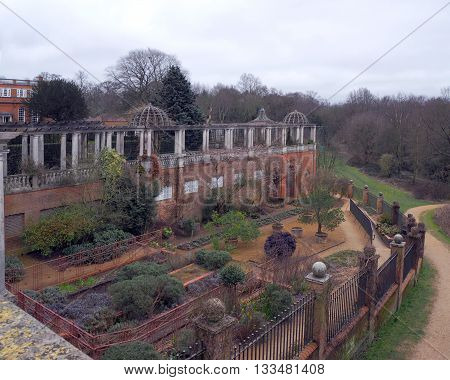 Garden in winter with pergola and formal shrubs