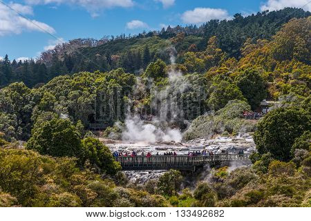 Rotorua New Zealand - November 20 2014: People watching Pohutu Geyser in Rotorua New Zealand