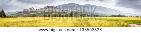 An image of a view to Assisi in Italy Umbria golden field panorama