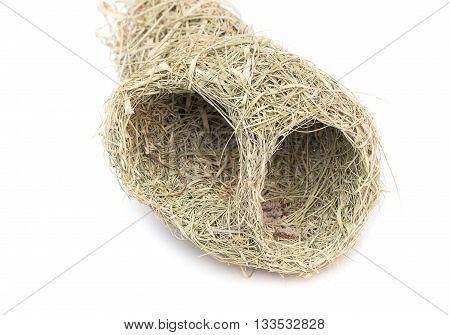 Close up Baya weaver bird nest skylark nests on white background.(select focus front skylark nests )