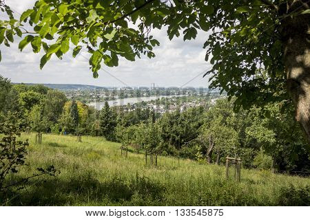 Countryside view of the River Rhine and Bonn in the distance