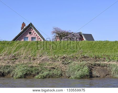 Dyke protecting houses of flood waters. Natural disaster.