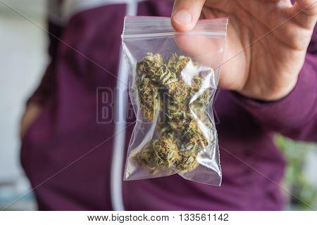 Man in purple hoodie trading marijuana showing buds in the zip package