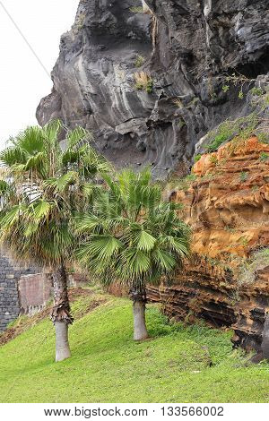 Lava and red tuff near of Camara de Lobos on the Atlantic island of Madeira