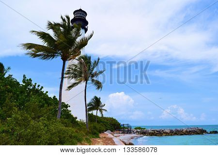 Cape Florida Lighthouse amongst Palm Trees and tropical plants overlooking the Atlantic Ocean taken in Key Biscayne, FL