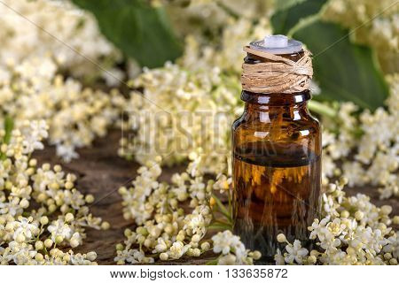 Essential oil made from elder on a rustic table