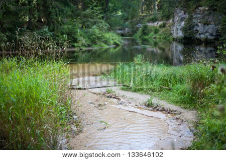 Small stream running into a river surrounded by lush forests