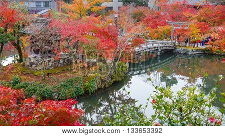 Colorful Autumn at Eikando Zenrinji Temple in Kyoto, Japan