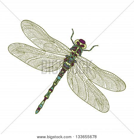 Mosaic stylized dragonfly. Ethnic colorful patterned vector illustration. Perfect design element for housewarming poster, t-shirt print, fabric design. Elegant decoration. Vector isolated dragonfly.