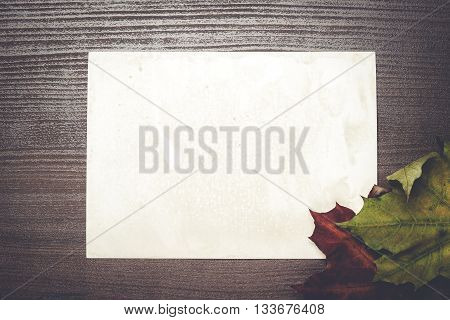 some autumn leaves and blanck old photo on wooden table