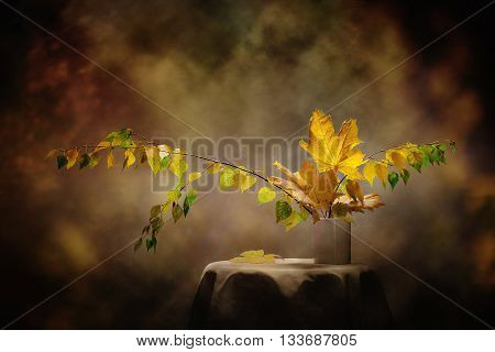 Still Life Autumn concept image from the leaves of birch and maple.
