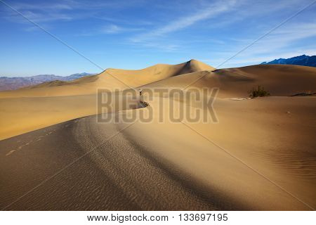 Woman in striped shirt photographing sand waves. Mesquite Flat Sand Dunes. Hot autumn in Death Valley, California
