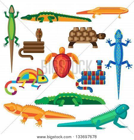 Reptiles and amphibians vector set. Reptiles vector wildlife cartoon icon graphic snake and reptiles vector chameleon zoo wild art. Vector amphibian, crocodile skin iguana tropical animals.
