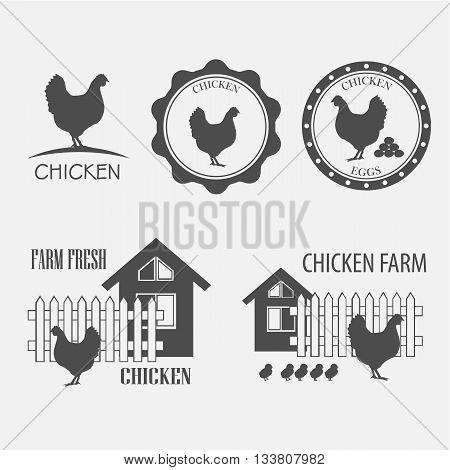 chicken farm and chicken eggs - vector illustration