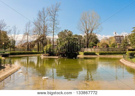 Little Lake With Ducks In An Urban Public Park, Italy