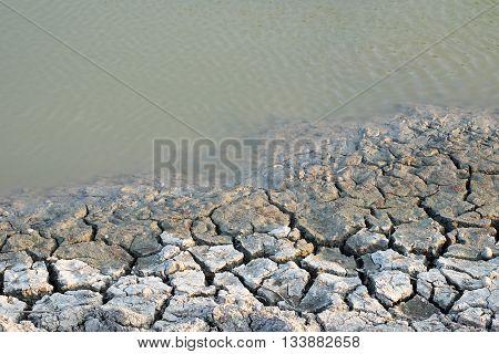 Dry Cracked