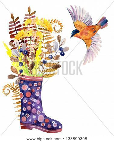 Watercolor polka dot rubber boots with meadow herbs and bird. Hand painted autumn illustration with gumboots blackthorn branches fern and field floweers