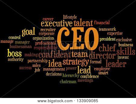 Ceo - Chief Executive Officer, Word Cloud Concept