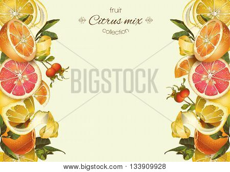 Vector vintage citrus banner with lemon hibiscus and rose hip.Design for tea juice natural cosmetics bakingcandy and sweets with citrus fillinggroceryhealth care products. With place for text.