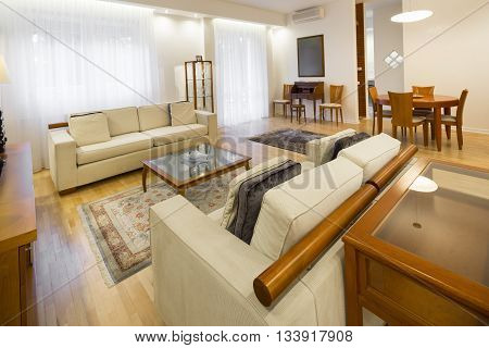 contemporary living room  in a apartment luxury interior
